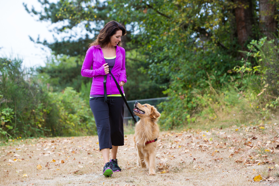 Dogs: How Our Furry Friends Are Good for Our Health